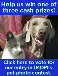 Vote for Bessie!