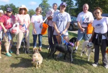Join us at Strut your Mutt in reality or virtually