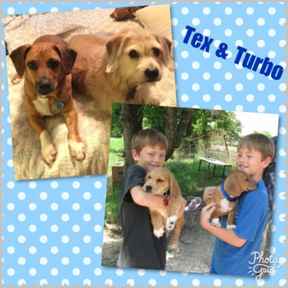 Tex and Turbo